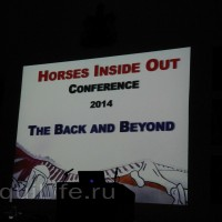 Фоторепортаж: Научная конференция The Back & Beyond - фото 03_wm-200x200, главная Здоровье лошади Разное События Тренинг Фото , конный журнал EquiLIfe