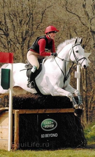 Джиллиан Хиггинс (HORSES INSIDE OUT): «Лошади находятся в безопасности рядом с людьми» - фото 13067.40737.sponsor1large_wm1, главная Джилиан Хиггинс (Horses Inside Out) Интервью События Содержание лошади Тренинг , конный журнал EquiLIfe