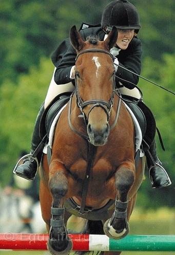 Джиллиан Хиггинс (HORSES INSIDE OUT): «Лошади находятся в безопасности рядом с людьми» - фото 256_wm, главная Джилиан Хиггинс (Horses Inside Out) Интервью События Содержание лошади Тренинг , конный журнал EquiLIfe