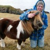 Фото: facebook.com/pages/SOCKS-the-Shetland-Moonwalking-Pony