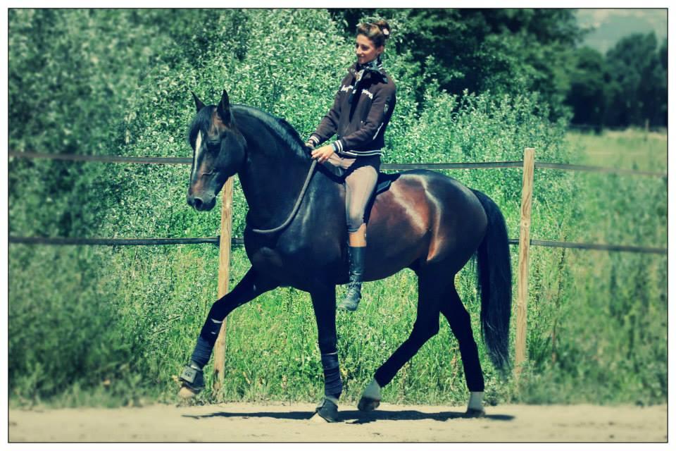 Ализе Фроман (Alizee Froment) - фото 581088_10200892197845329_66811734_n, главная Тренинг , конный журнал EquiLIfe