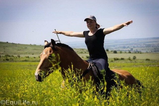 """""""На полном доверии"""". Интервью с частным коневладельцем Ксенией Урчуковой - фото By4tbTHC2d0_wm_wm, главная Интервью Разное Тренинг , конный журнал EquiLIfe"""