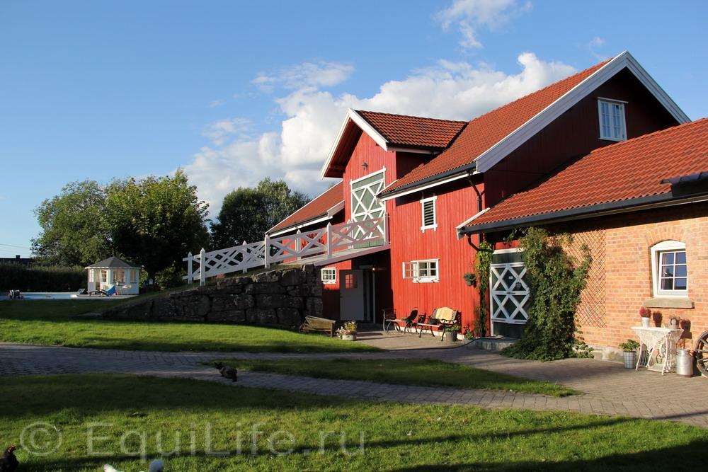 Фоторепортаж: Конюшня на юге Норвегии - фото IMG_3578_wm, главная Конюшня Пастбище Содержание лошади , конный журнал EquiLIfe