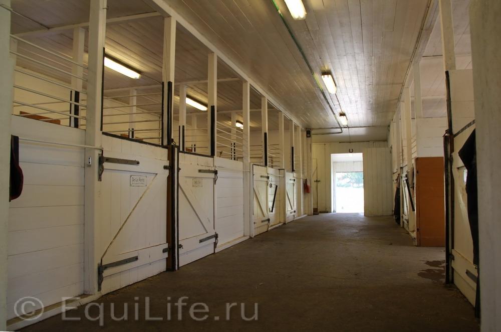 Фоторепортаж: Конюшня на юге Норвегии - фото IMG_4475_wm, главная Конюшня Пастбище Содержание лошади , конный журнал EquiLIfe