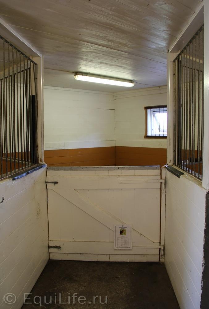 Фоторепортаж: Конюшня на юге Норвегии - фото IMG_4476_wm, главная Конюшня Пастбище Содержание лошади , конный журнал EquiLIfe
