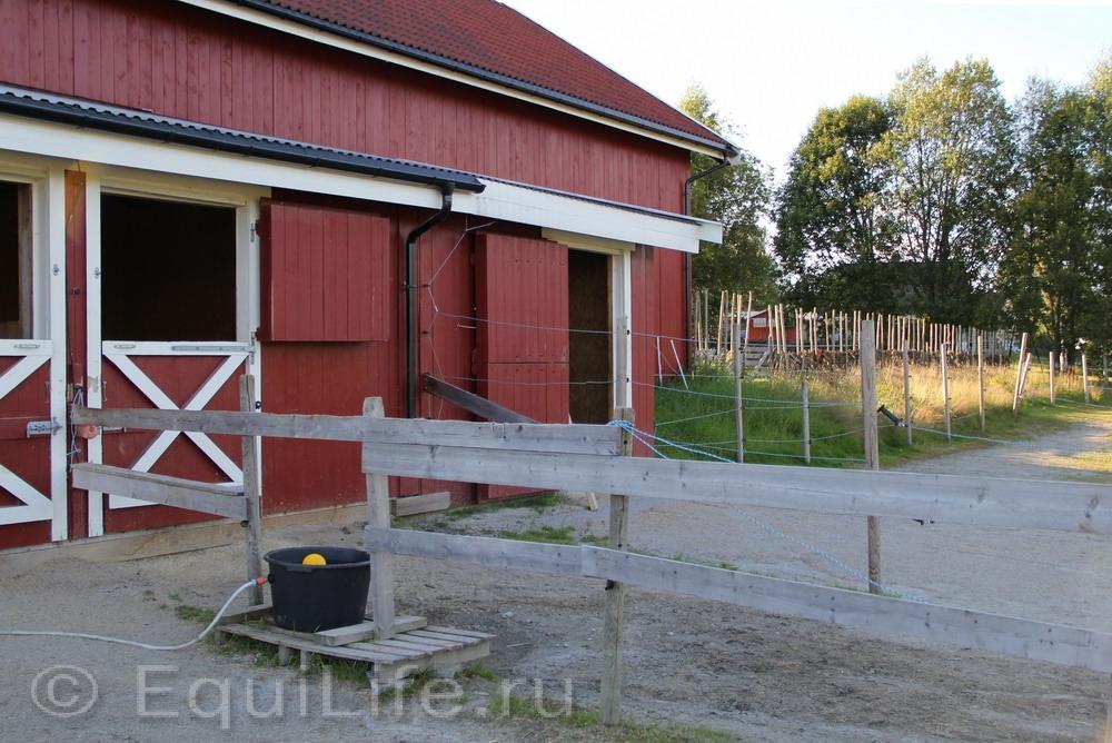 Фоторепортаж: Конюшня на юге Норвегии - фото IMG_4579_wm, главная Конюшня Пастбище Содержание лошади , конный журнал EquiLIfe
