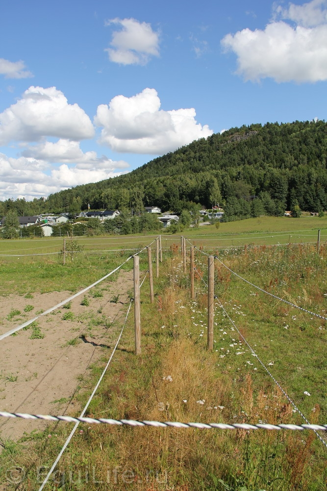 Фоторепортаж: Конюшня на юге Норвегии - фото IMG_4586_wm, главная Конюшня Пастбище Содержание лошади , конный журнал EquiLIfe