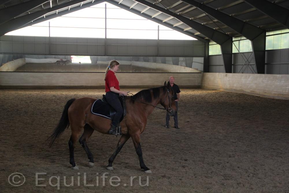 Фоторепортаж: Конюшня на юге Норвегии - фото IMG_4691_wm, главная Конюшня Пастбище Содержание лошади , конный журнал EquiLIfe
