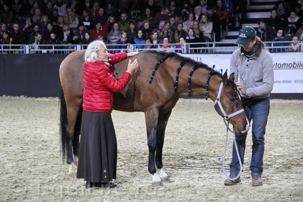 Линда Теллингтон-Джонс: Слушать сердце - фото IMG_1047_wm, главная Здоровье лошади Интервью Линда Теллингтон-Джонс Поведение лошади , конный журнал EquiLIfe