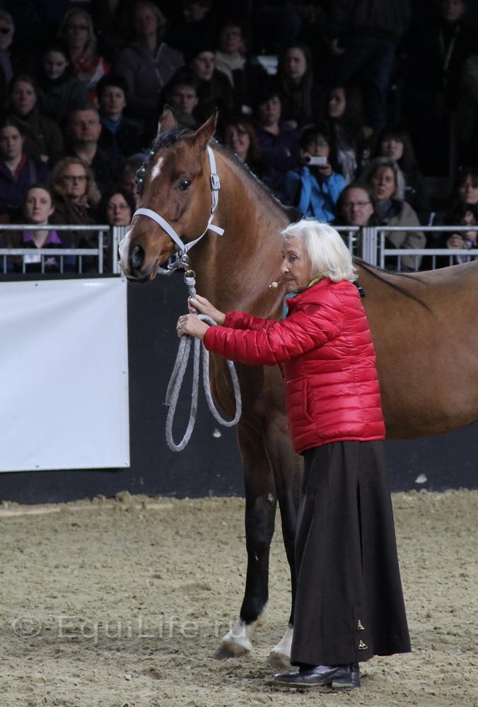 Линда Теллингтон-Джонс: Слушать сердце - фото IMG_1070_wm, главная Здоровье лошади Интервью Линда Теллингтон-Джонс Поведение лошади , конный журнал EquiLIfe