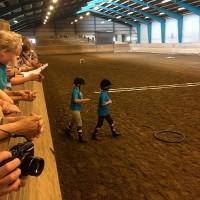 Фотоотчет: Конференция International Society for Equitation Science - фото 08-200x200, главная Здоровье лошади Новости Поведение лошади Тренинг , конный журнал EquiLIfe