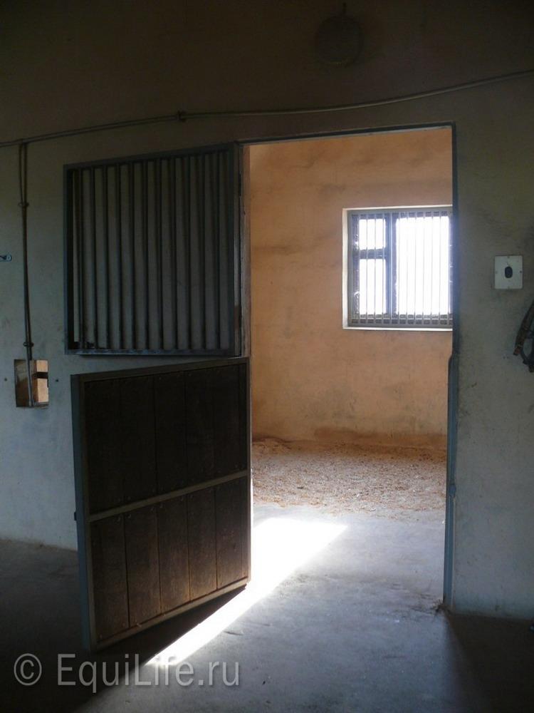 Фоторепортаж: конюшня в Подмосковье - фото 12_wm, главная Здоровье лошади Конюшня Содержание лошади , конный журнал EquiLIfe