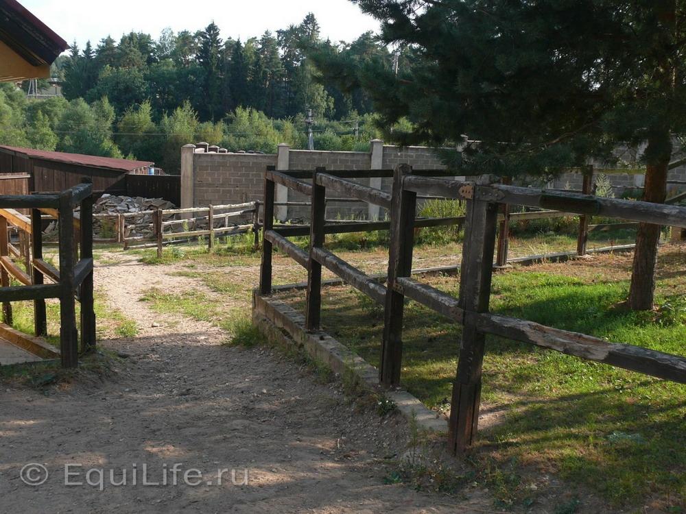 Фоторепортаж: конюшня в Подмосковье - фото 20_wm, главная Здоровье лошади Конюшня Содержание лошади , конный журнал EquiLIfe