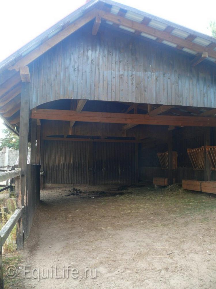 Фоторепортаж: конюшня в Подмосковье - фото 22_wm, главная Здоровье лошади Конюшня Содержание лошади , конный журнал EquiLIfe
