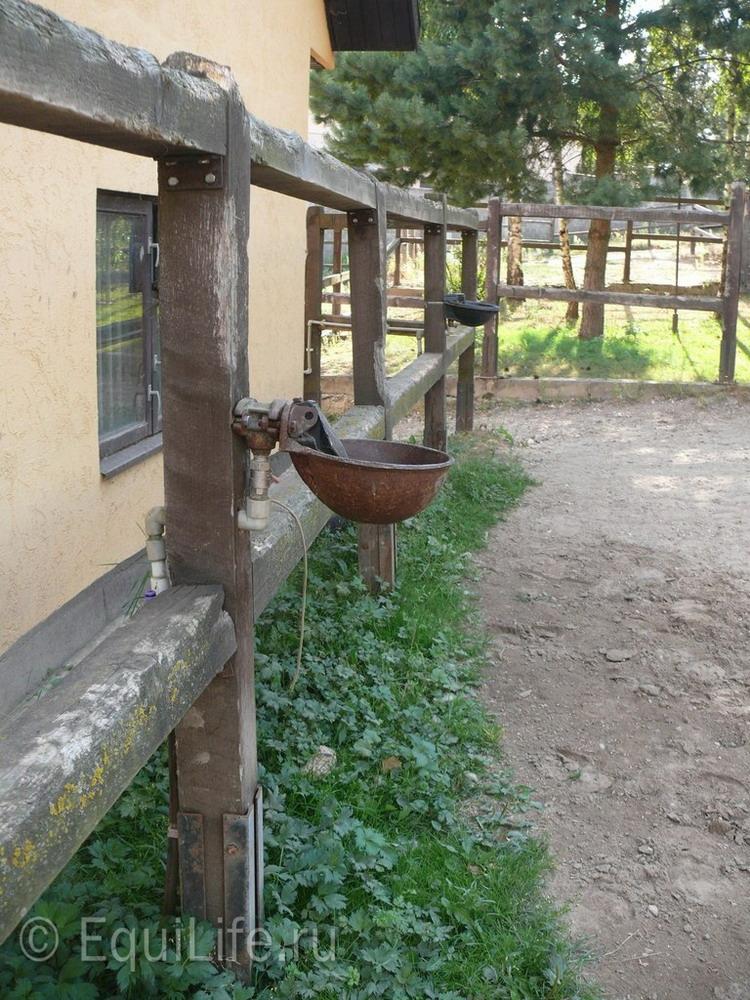 Фоторепортаж: конюшня в Подмосковье - фото 24_wm, главная Здоровье лошади Конюшня Содержание лошади , конный журнал EquiLIfe