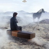 Исландские лошади и Hermès - фото 10458891_723932397644700_6537407743527943052_n-200x200, главная Интересное о лошади Разное , конный журнал EquiLIfe