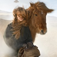 Исландские лошади и Hermès - фото 10600428_723932514311355_5006822362497284783_n-200x200, главная Интересное о лошади Разное , конный журнал EquiLIfe