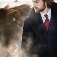 Исландские лошади и Hermès - фото 10660162_723932367644703_6088286548336084092_n-200x200, главная Интересное о лошади Разное , конный журнал EquiLIfe