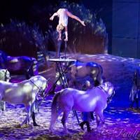 Фредерик Пиньон и Магали Дельгадо. Шоу Eqi Cheval Libre - фото 120-200x200, главная Разное Фредерик Пиньон и Магали Дельгадо , конный журнал EquiLIfe