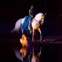 Фредерик Пиньон и Магали Дельгадо. Шоу Eqi Cheval Libre - фото 150-200x200, главная Разное Фредерик Пиньон и Магали Дельгадо , конный журнал EquiLIfe