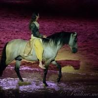 Фредерик Пиньон и Магали Дельгадо. Шоу Eqi Cheval Libre - фото 155-200x200, главная Разное Фредерик Пиньон и Магали Дельгадо , конный журнал EquiLIfe