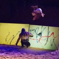 Фредерик Пиньон и Магали Дельгадо. Шоу Eqi Cheval Libre - фото 301-200x200, главная Разное Фредерик Пиньон и Магали Дельгадо , конный журнал EquiLIfe