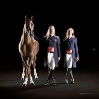 Animo Italia: коллекция-2014 в фотокаталоге - фото 1976970_10152371634219574_257330361_n-200x200, главная Разное Фото , конный журнал EquiLIfe