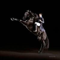 Animo Italia: коллекция-2014 в фотокаталоге - фото 923499_10152372709554574_1022131499_n-200x200, главная Разное Фото , конный журнал EquiLIfe