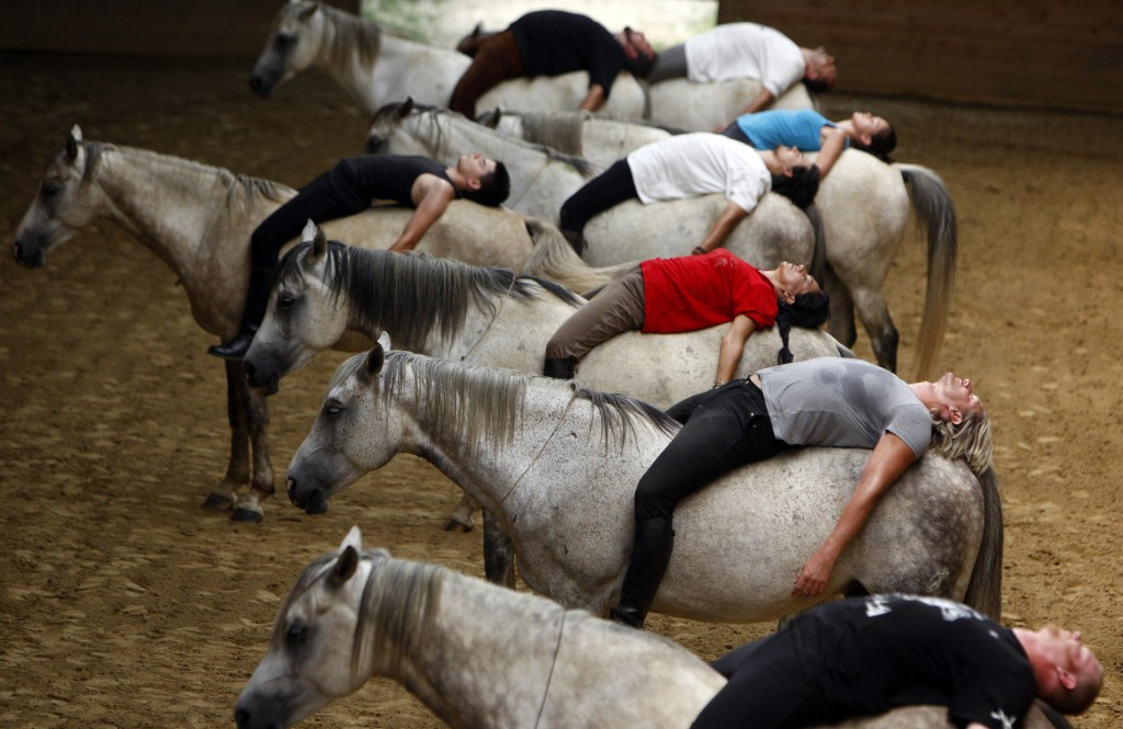 Конные лучники из Капошмерё - фото Reuters_Budapest_horse_show_practice_03aug11-1024x665, главная Конные истории Разное , конный журнал EquiLIfe