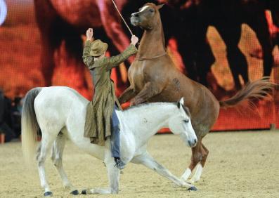 Что готовит EQUITANA 2015 - фото showcup, главная Новости Разное , конный журнал EquiLIfe