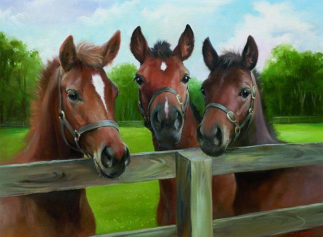 О чем пишет конный журнал EquiLife.ru - фото 145669v, Новости Разное , конный журнал EquiLIfe