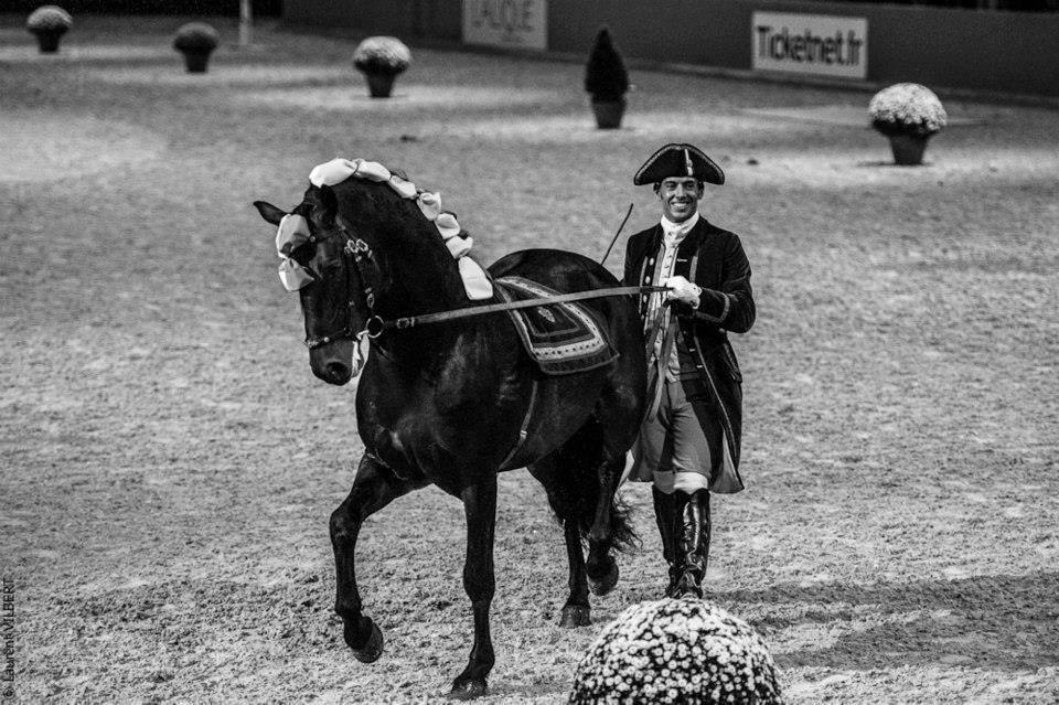 """Paulo Sérgio: """"….поэтому мы называемся Школа ИСКУССТВА верховой езды!"""" - фото k1ejdnAx_4E, главная Интервью Тренинг , конный журнал EquiLIfe"""