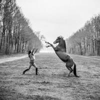 Антуан Бассале (Antoine Bassaler) - фото 10256614_284124965079062_7903920001480315875_o-200x200, главная Разное Фото , конный журнал EquiLIfe