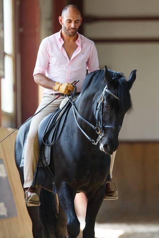 """Paulo Sérgio: """"….поэтому мы называемся Школа ИСКУССТВА верховой езды!"""" - фото 10341429_512324882227694_7048168666994926766_n, главная Интервью Тренинг , конный журнал EquiLIfe"""