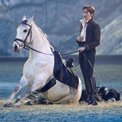 Эквитана раскрыла имена HOT-TOP-SHOW 2015 - фото Anne, главная Новости Разное , конный журнал EquiLIfe