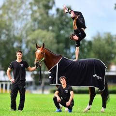 Эквитана раскрыла имена HOT-TOP-SHOW 2015 - фото Bruesewitz, главная Новости Разное , конный журнал EquiLIfe