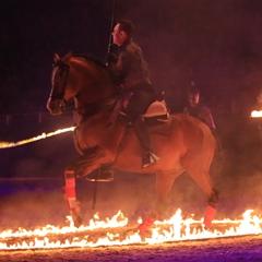 Эквитана раскрыла имена HOT-TOP-SHOW 2015 - фото Excalibur, главная Новости Разное , конный журнал EquiLIfe