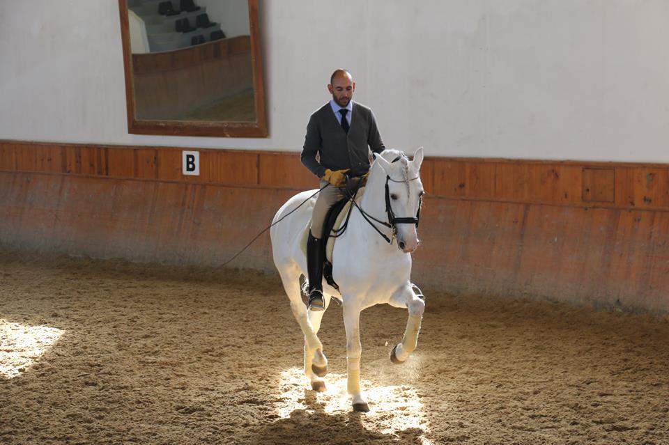 Семинар Пауло Сержио в России - фото Photo-Credit-Filipa-Jácome, Новости , конный журнал EquiLIfe