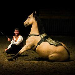 Эквитана раскрыла имена HOT-TOP-SHOW 2015 - фото christophe, главная Новости Разное , конный журнал EquiLIfe