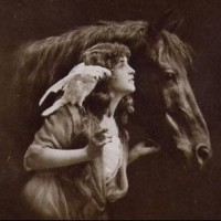 Фотографии из 1900 года: женщина и лошадь - фото postcard-4-200x200, главная Разное Фото , конный журнал EquiLIfe