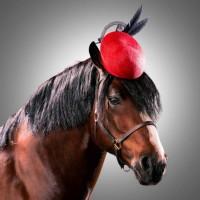Лошади в шляпках - фото rosie-olivia-millinery-for-aintree-grand-national-2014-05-200x200, главная Разное Фото , конный журнал EquiLIfe