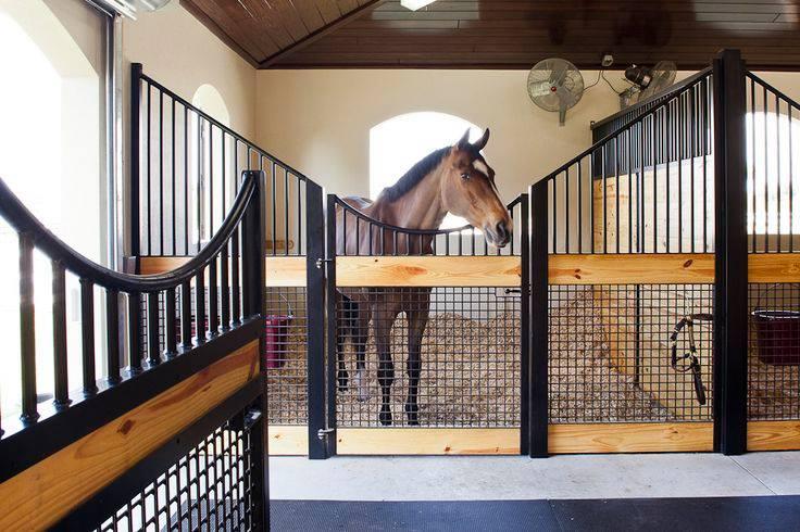 Основные требования к безопасности и микроклимату на конюшне - фото 1620698_820572108017602_436585131742231655_n, главная Здоровье лошади Конюшня Содержание лошади , конный журнал EquiLIfe