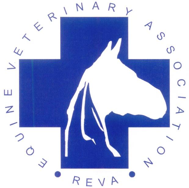 """Семинар """"Актуальные проблемы ветеринарной медицины лошадей"""" - фото 253832, Новости , конный журнал EquiLIfe"""