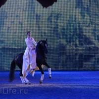 """Фоторепортаж: EQUITANA 2015 - HOP-TOP-SHOW """"Amirando"""" - фото IMG_9053_новый-размер_wm-200x200, главная Разное Фото , конный журнал EquiLIfe"""