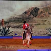 """Фоторепортаж: EQUITANA 2015 - HOP-TOP-SHOW """"Amirando"""" - фото IMG_9263_новый-размер_wm-200x200, главная Разное Фото , конный журнал EquiLIfe"""