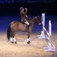 """Фоторепортаж: EQUITANA 2015 - HOP-TOP-SHOW """"Amirando"""" - фото IMG_9334_новый-размер_wm-200x200, главная Разное Фото , конный журнал EquiLIfe"""