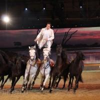 """Фоторепортаж: EQUITANA 2015 - HOP-TOP-SHOW """"Amirando"""" - фото IMG_9425_новый-размер_wm-200x200, главная Разное Фото , конный журнал EquiLIfe"""