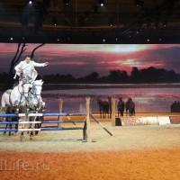 """Фоторепортаж: EQUITANA 2015 - HOP-TOP-SHOW """"Amirando"""" - фото IMG_9441_новый-размер_wm-200x200, главная Разное Фото , конный журнал EquiLIfe"""