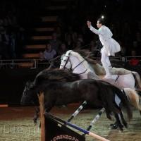 """Фоторепортаж: EQUITANA 2015 - HOP-TOP-SHOW """"Amirando"""" - фото IMG_9458_новый-размер_wm-200x200, главная Разное Фото , конный журнал EquiLIfe"""