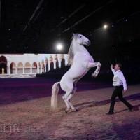 """Фоторепортаж: EQUITANA 2015 - HOP-TOP-SHOW """"Amirando"""" - фото IMG_9522_новый-размер_wm-200x200, главная Разное Фото , конный журнал EquiLIfe"""